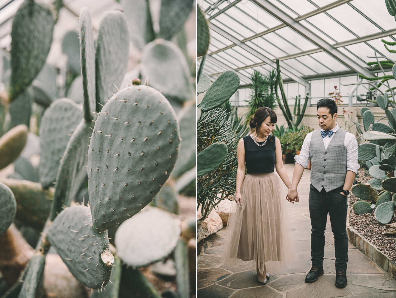rawlings conservatory baltimore engagement session cactus desert.jpg