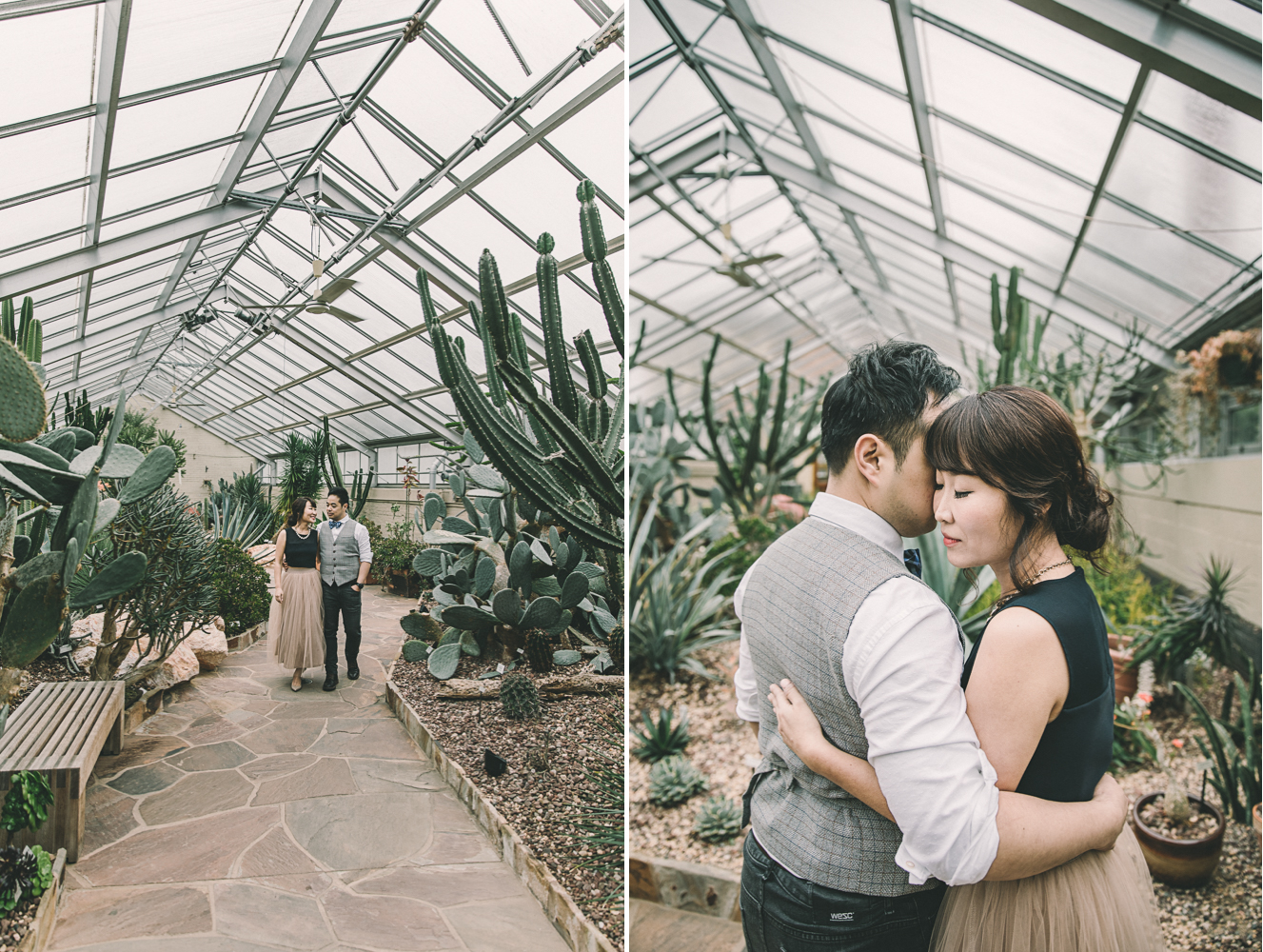 rawlings conservatory baltimore engagement session cactus.jpg