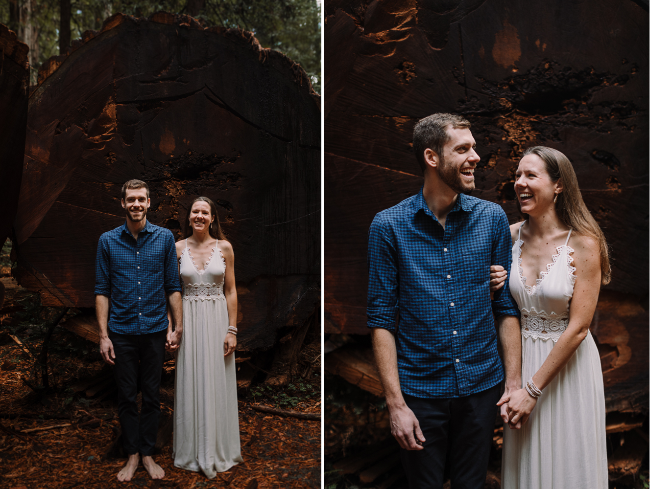 barbara o photography barefoot redwoods california elopement photographer.jpg