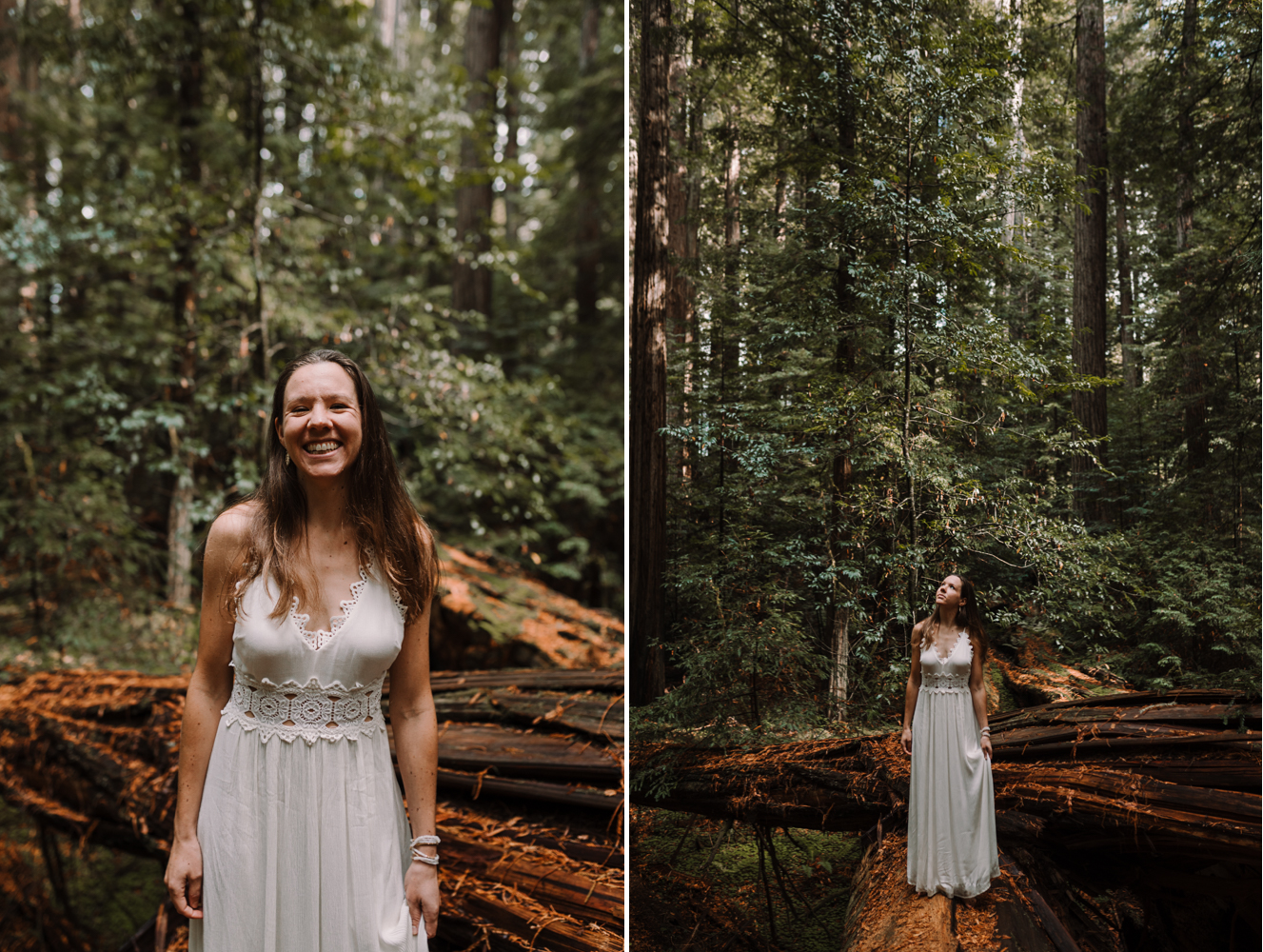 barbara o photography redwoods california elopement bride wedding photographer.jpg