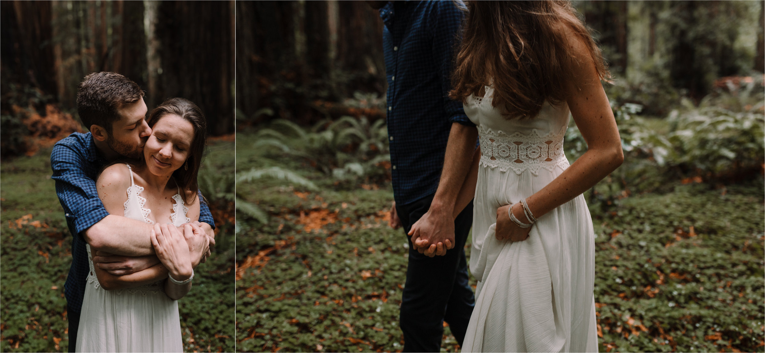 barbara o photography redwoods california elopement dc baltimore nyc photographer.jpg