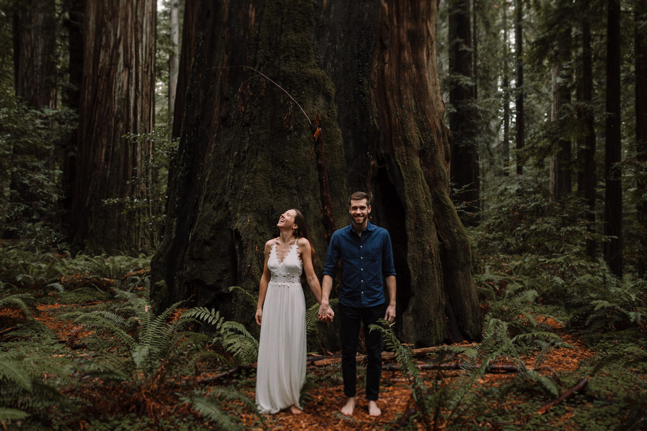 barbara o photography redwoods california elopement destination photographer-50.jpg