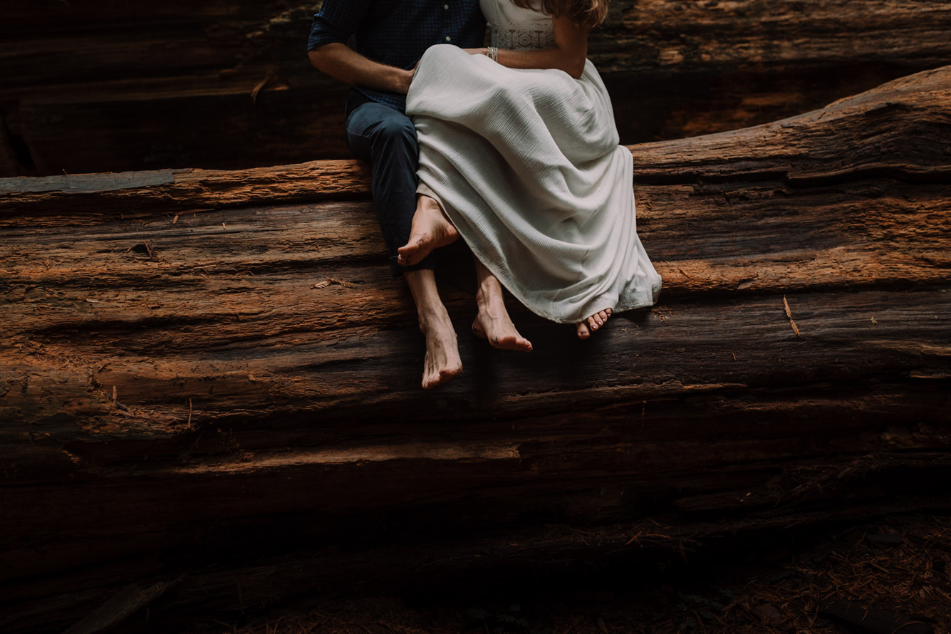 barbara o photography redwoods california elopement destination photographer-56.jpg