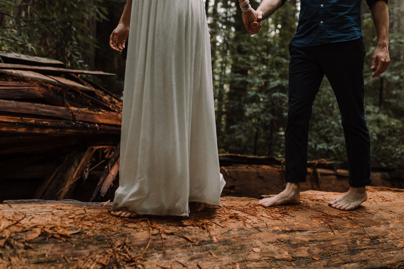 barbara o photography redwoods california elopement destination photographer-65.jpg
