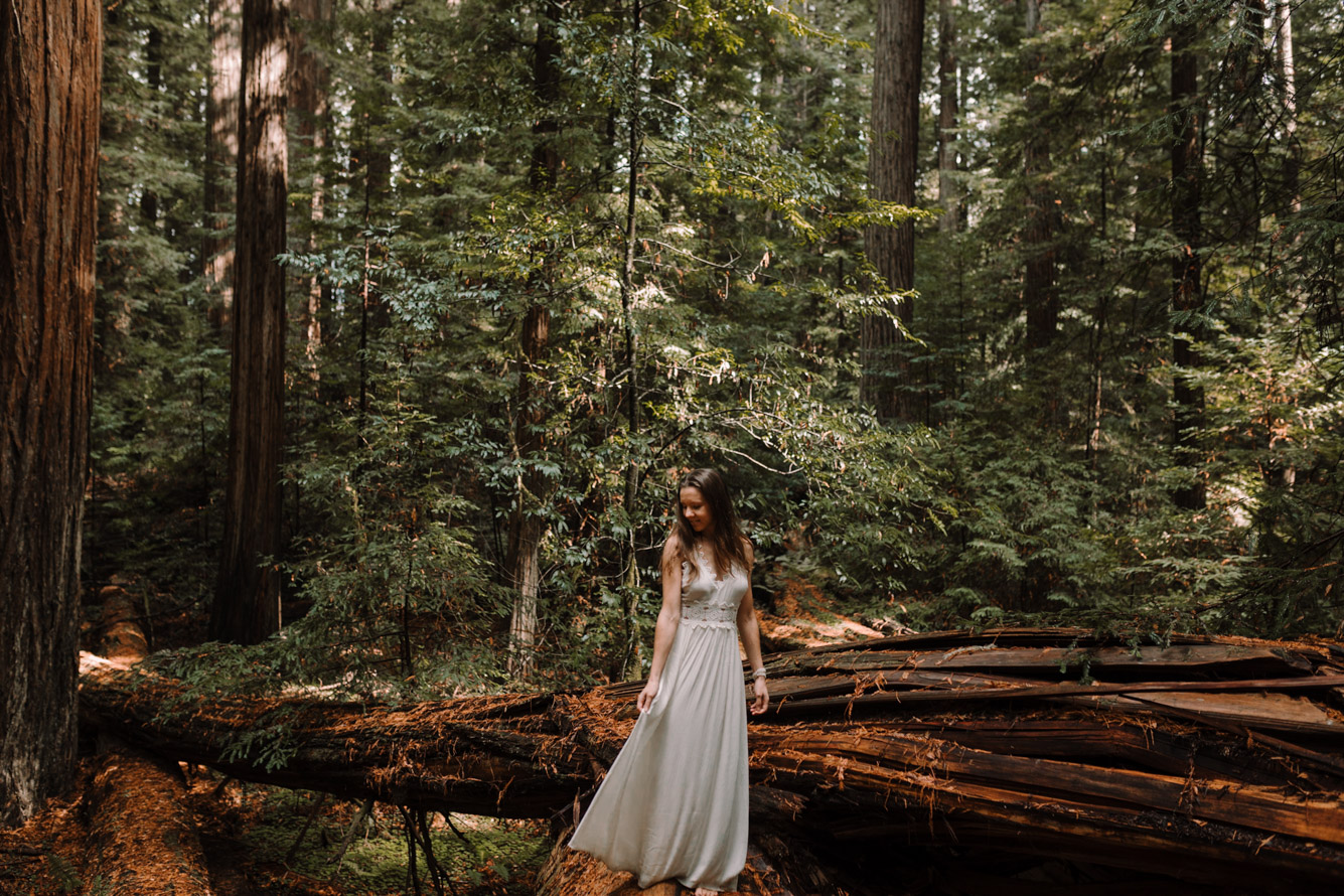 barbara o photography redwoods california elopement destination photographer-66.jpg
