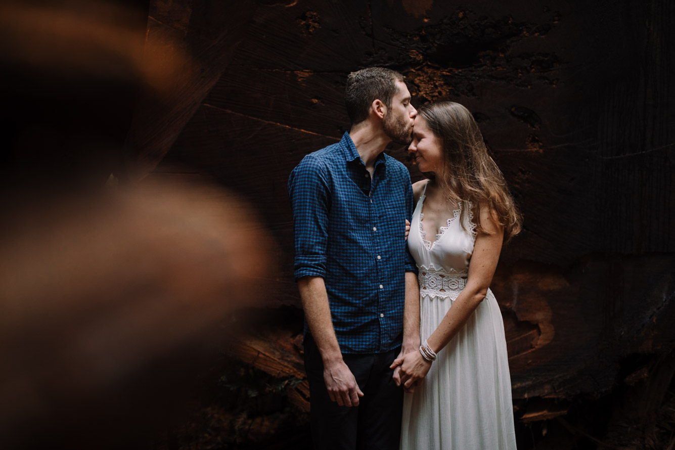 barbara o photography redwoods california elopement destination photographer-77.jpg