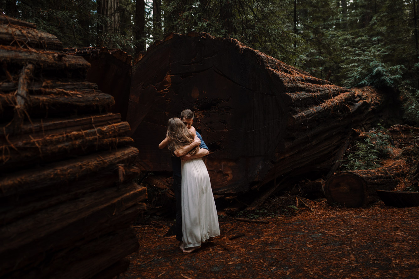barbara o photography redwoods california elopement destination photographer-78.jpg