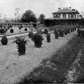 Linwood 1880's