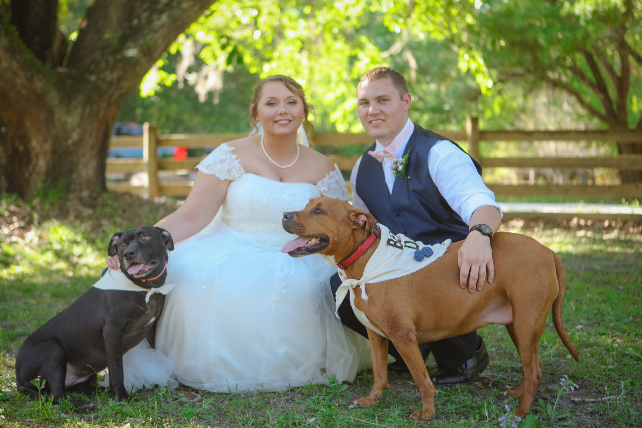 "Bride and groom take a photo with their ""best"" dogs"