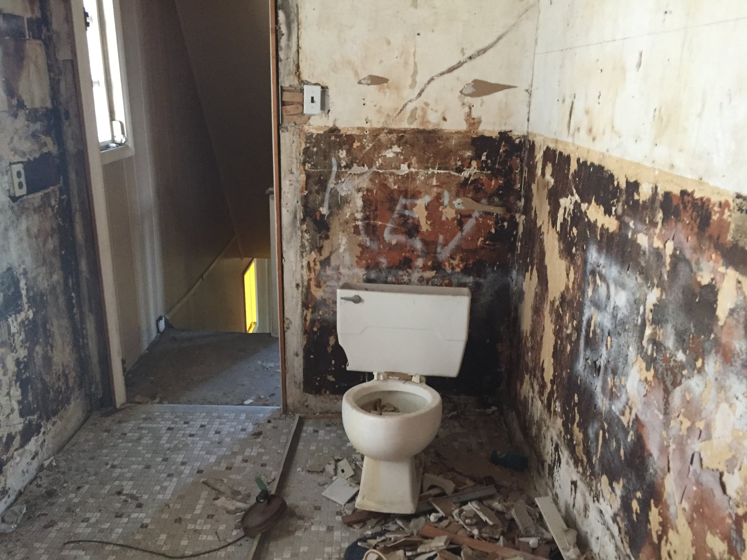 First Wildwood house - at least they kept the original toilet.