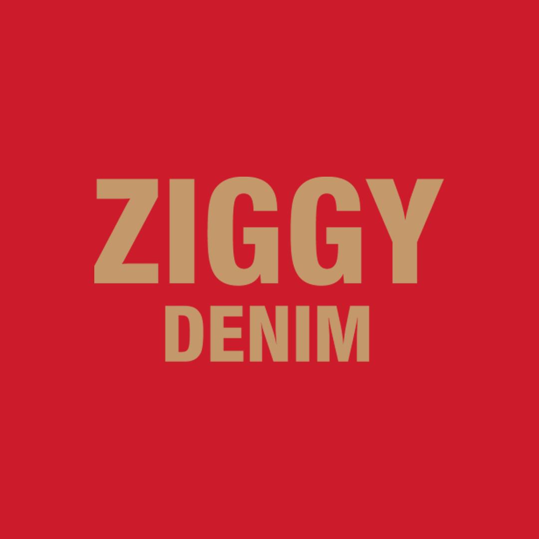 Ziggy-Denim.png
