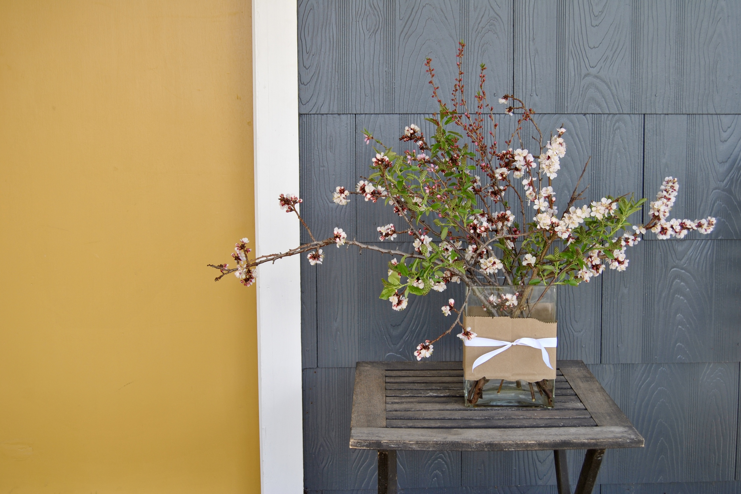 FORAGED ARRANGEMENT   Apricot blossoms, choke cherry buds and the mystery pink flower just in bud!