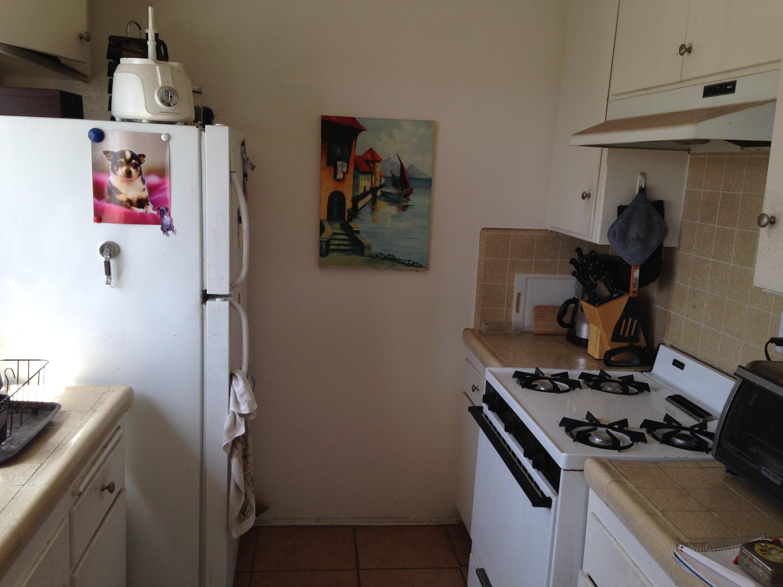 Kitchen overall before shot 2.JPG