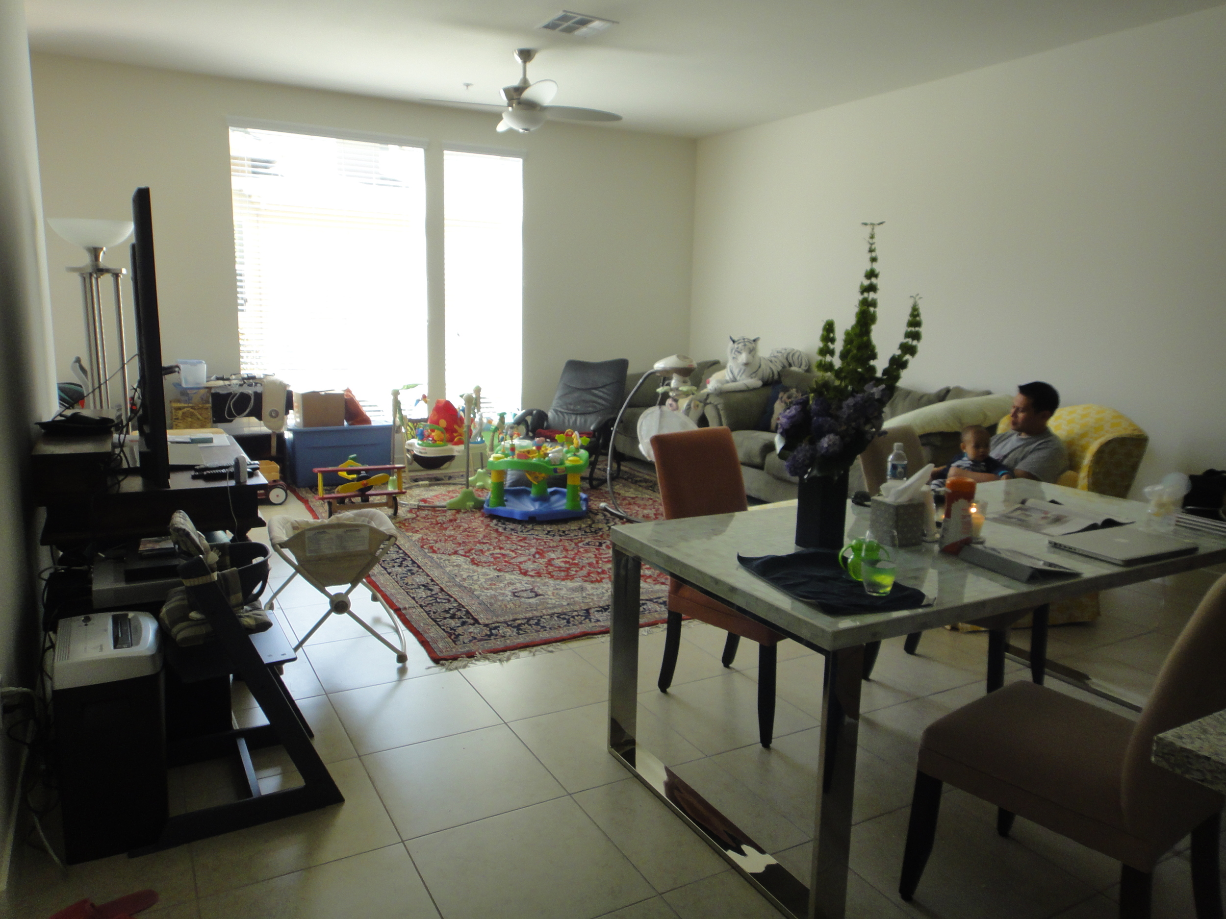 apartment overall before.JPG