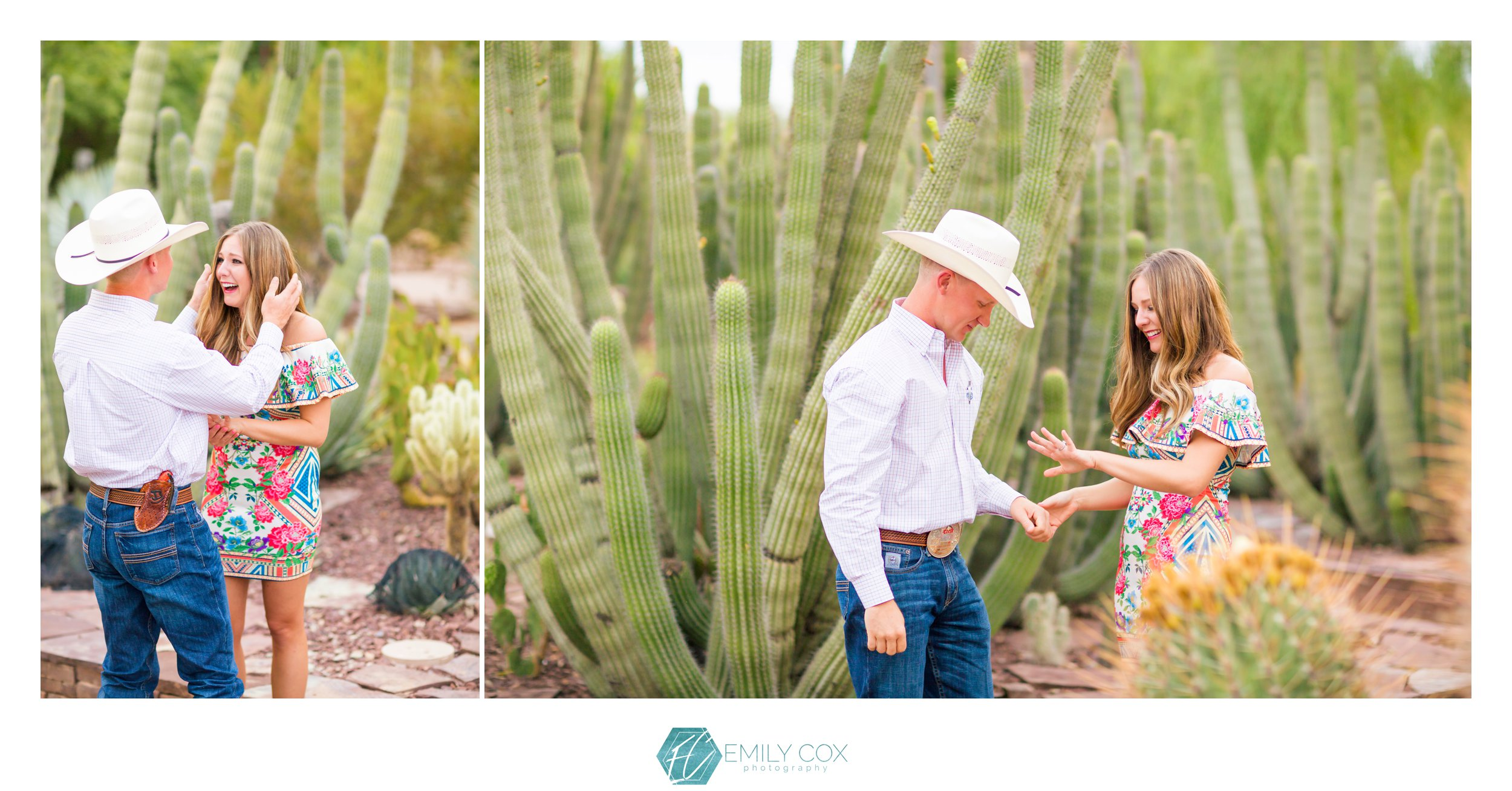 Phoenix Desert Botanical Garden | Surprise Proposal