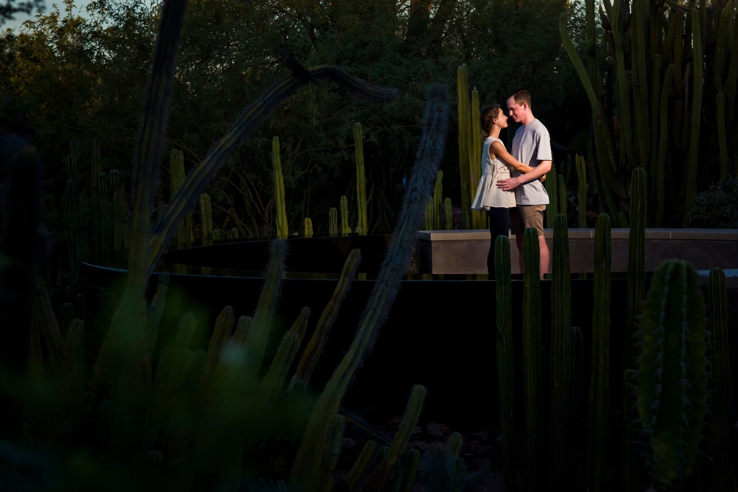 Surprise Engagement | Desert Botanical Gardens