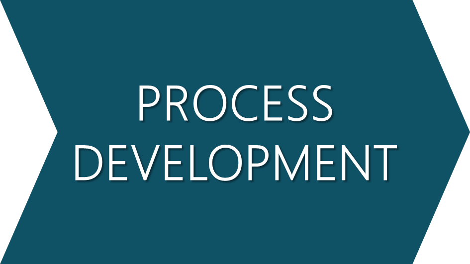 Process development.png