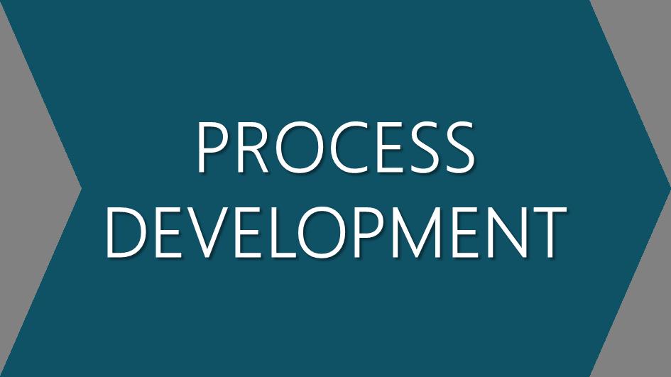 2-Process-development.png