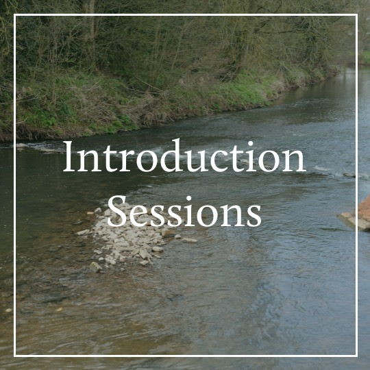 Introduction Sessions