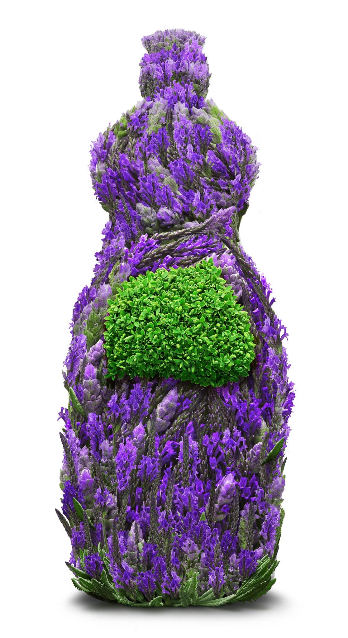 Lavender_DishWashing_10.jpg