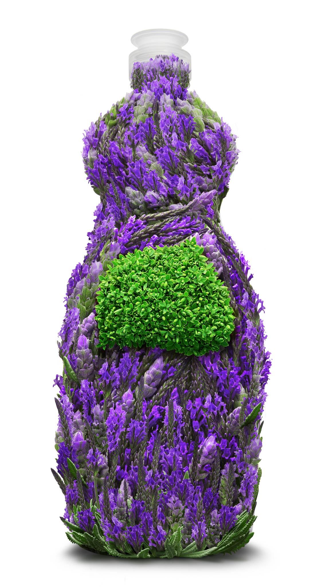 Lavender_DishWashing_12.jpg