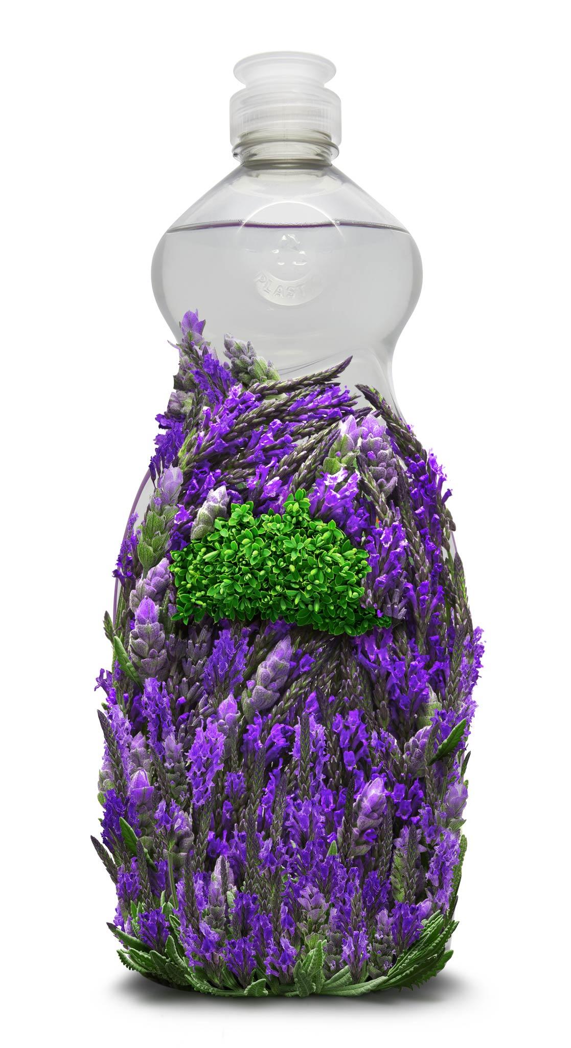 Lavender_DishWashing_14.jpg