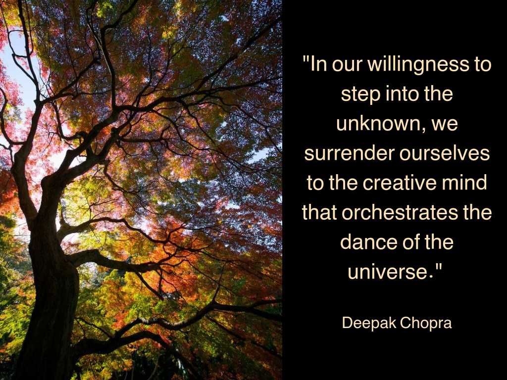In our willingness to step into the unknown, we surrender ourselves to the creative mind that orchestrates the dance of the universe_ (3).jpg