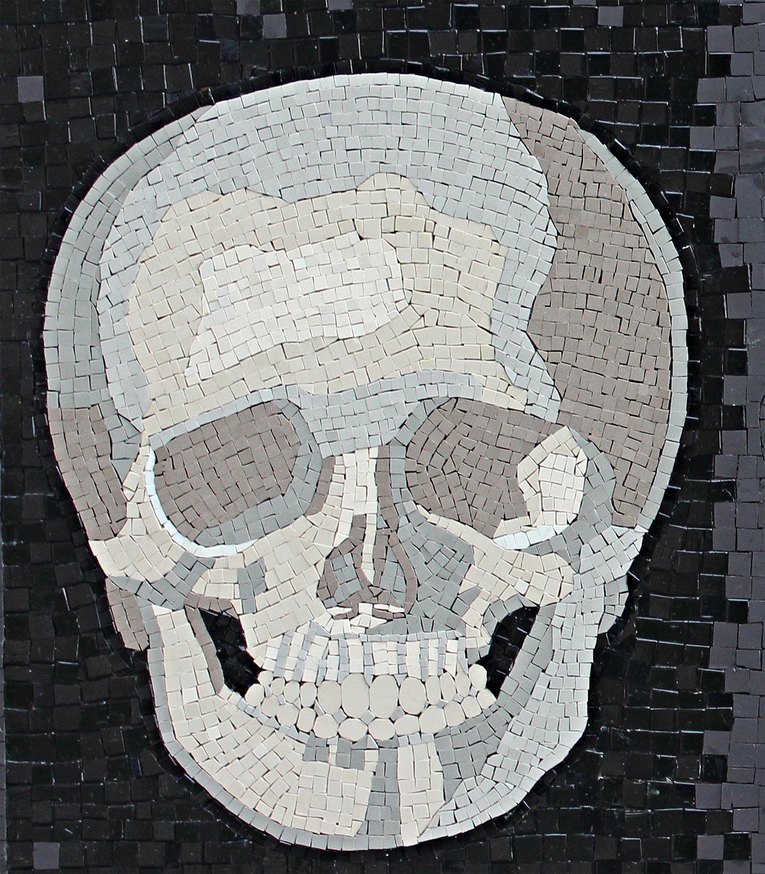 anatomy_skull.jpg