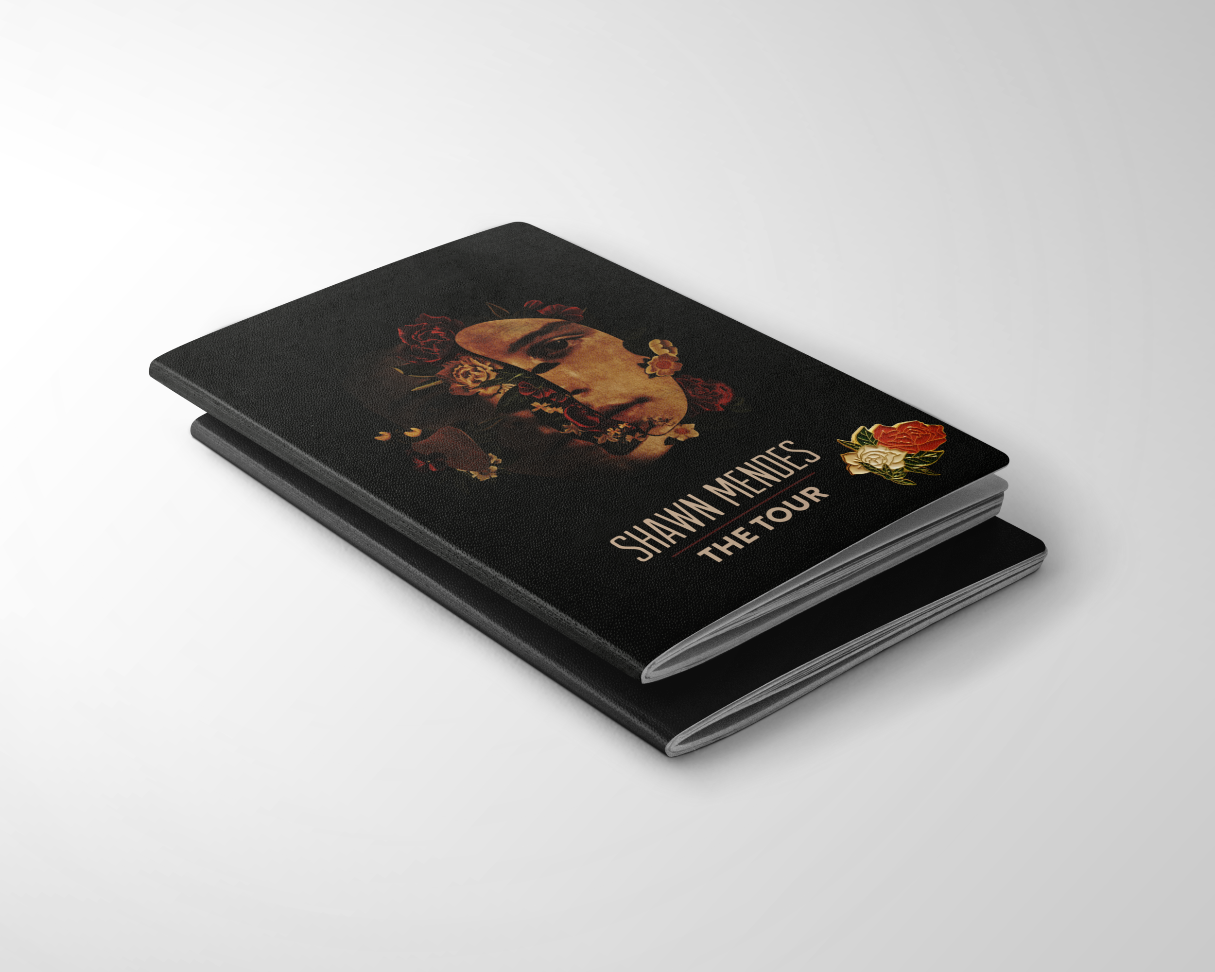 Passports+Pin.png