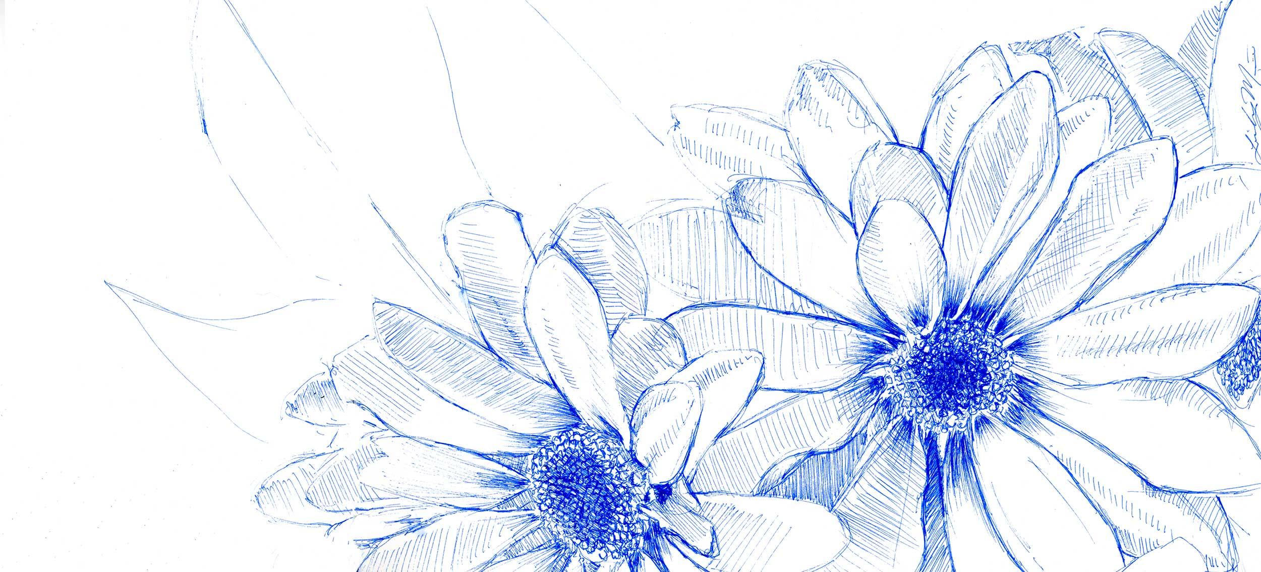 Flower-Sketch_2500.jpg