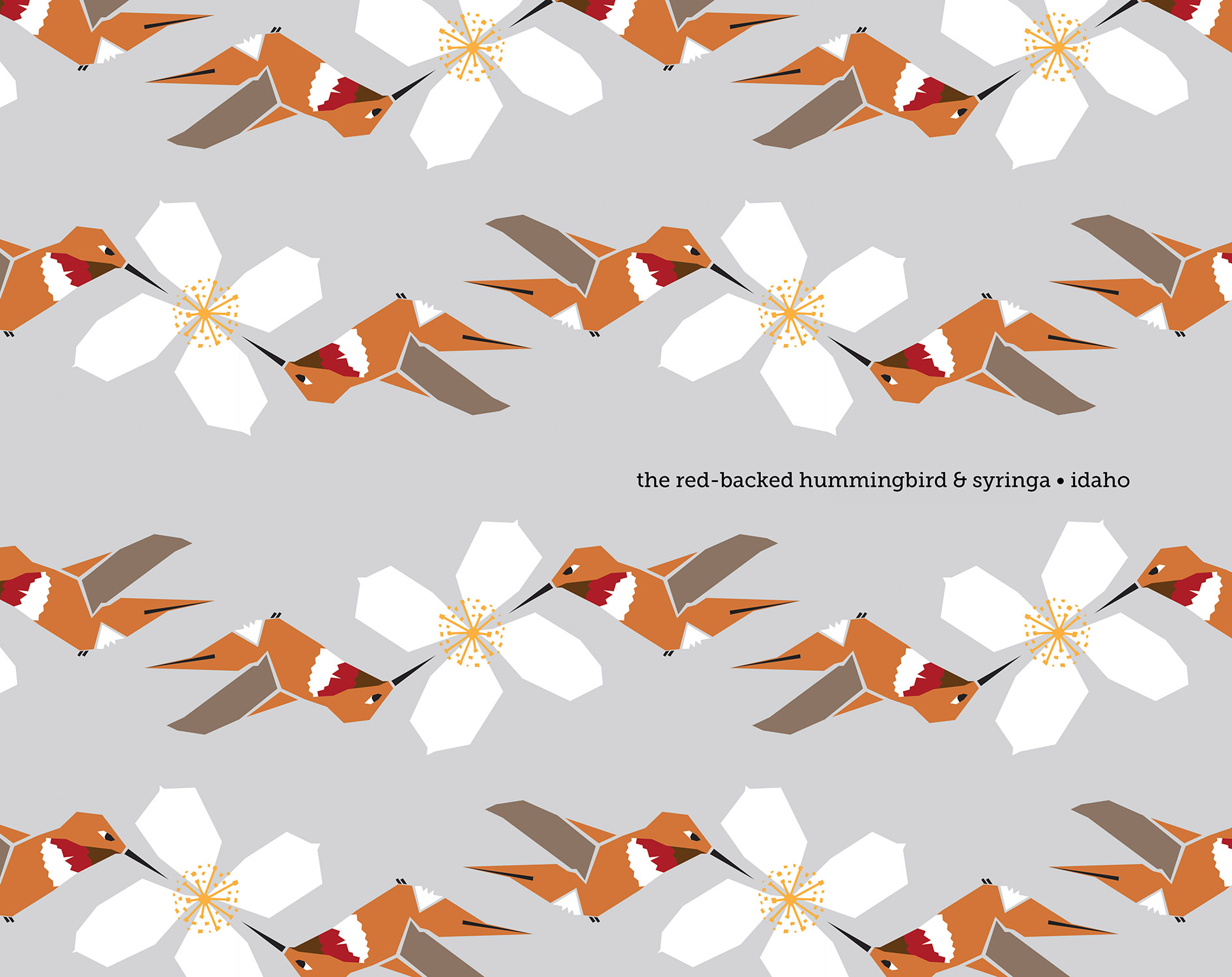 web_10x14Tray_Hummingbird-Syring_1500px.jpg