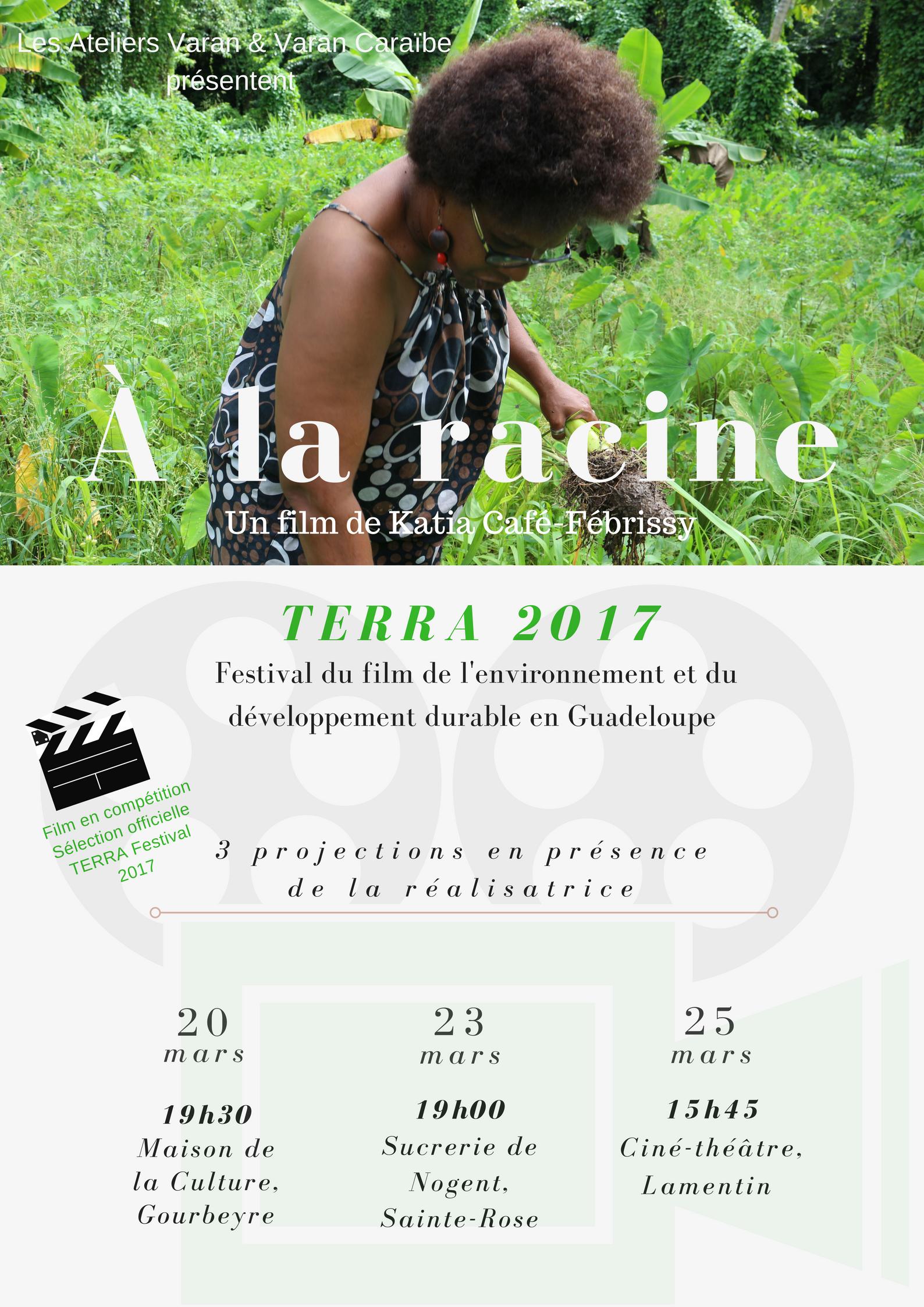 Copy of A la racine.png