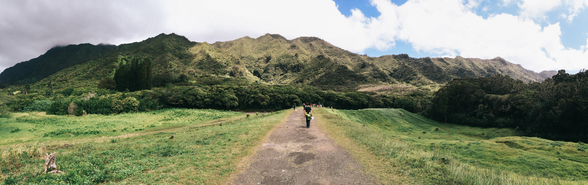 Hiking to Lulumahu Falls. We saw an abandoned reservoir, a waterfall, and a bamboo forest!