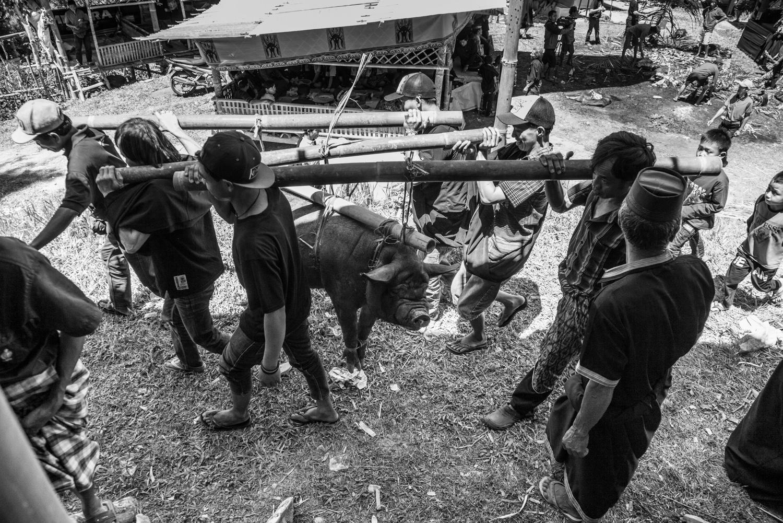 INDONESIA Sulawesi Toraja—2016 August 31 01;06;57.jpg