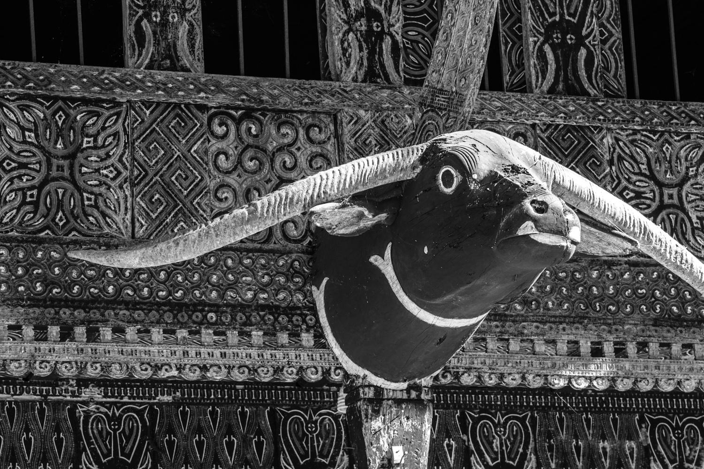 INDONESIA Sulawesi Toraja—2016 August 30 03;37;48.jpg
