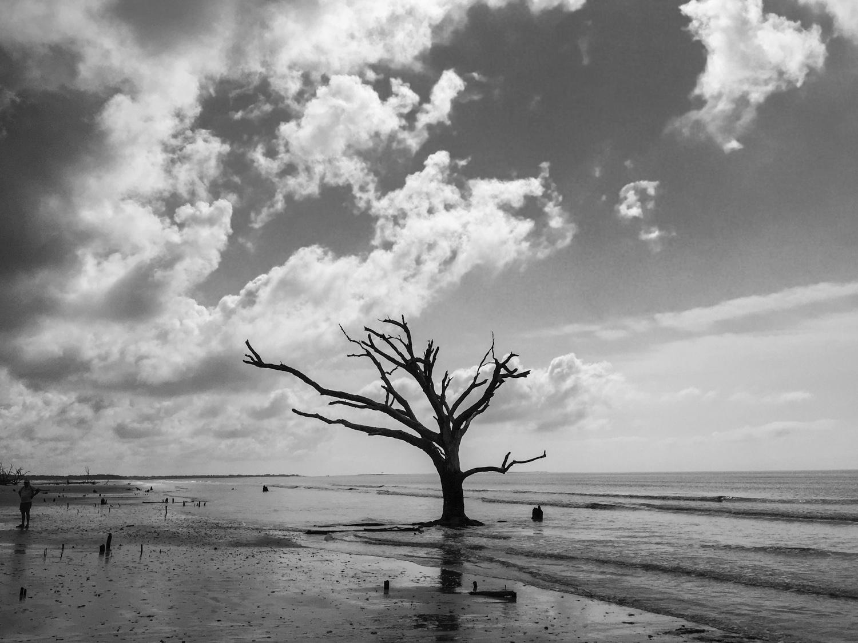 SC Edisto Island—2017 July 19 10;23;50.jpg
