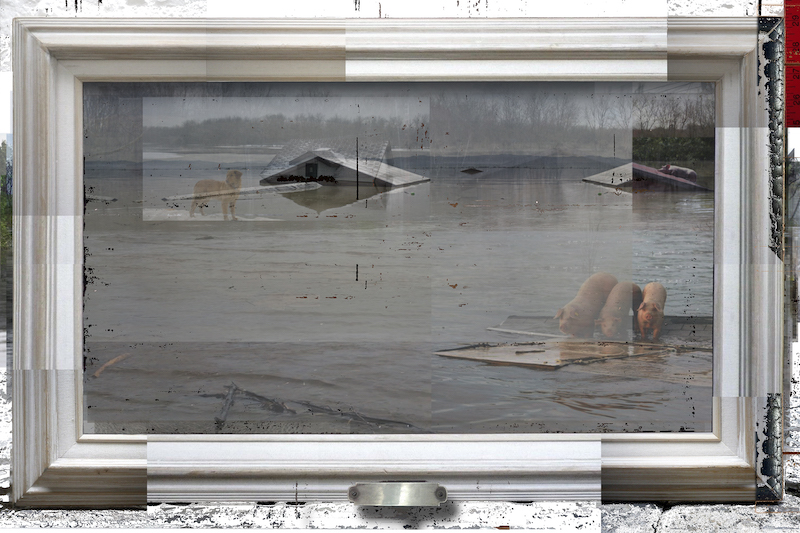 Video Frame: Flood, 2018