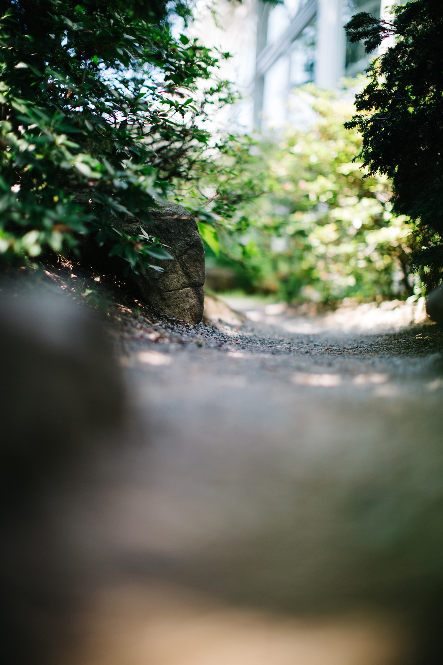 The sound of the pea gravel under my feet on the path.