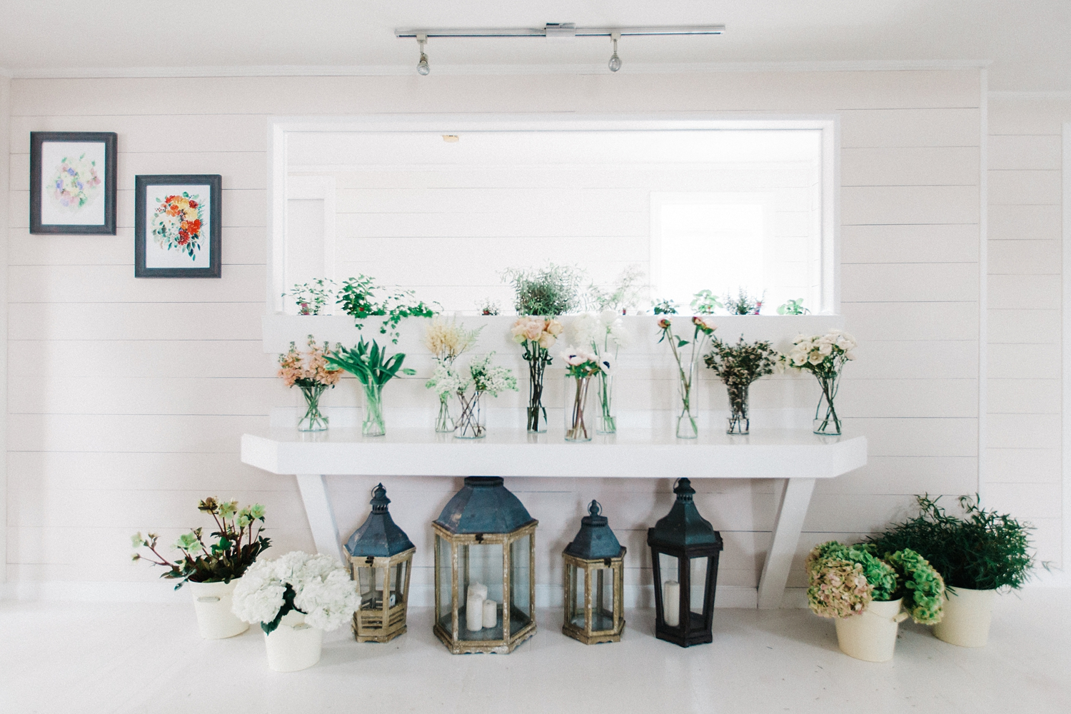 Showcase of flowers being used for designs.