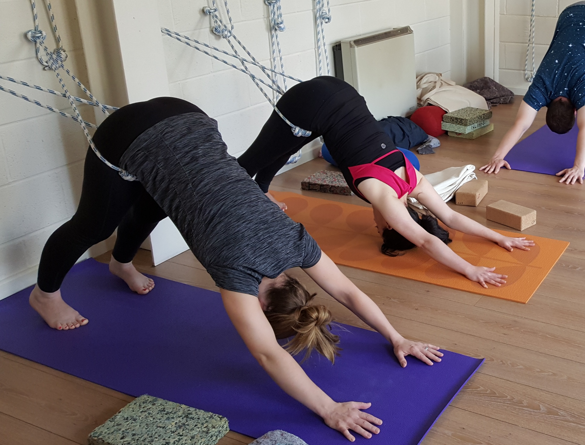 LEARNING THE ROPES - DOWNWARD DOG AT A WORKSHOP