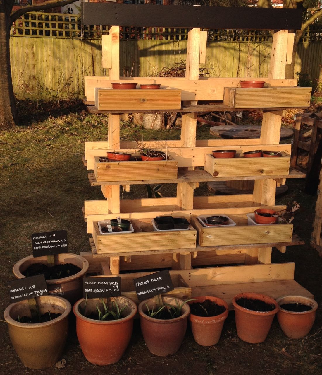 'Plant plaza', made from a pallet on which glass is delivered. Needs a sign!