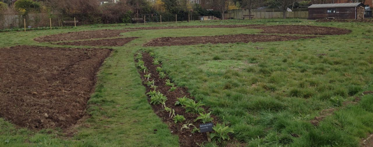 Ploughing the meadow beds....
