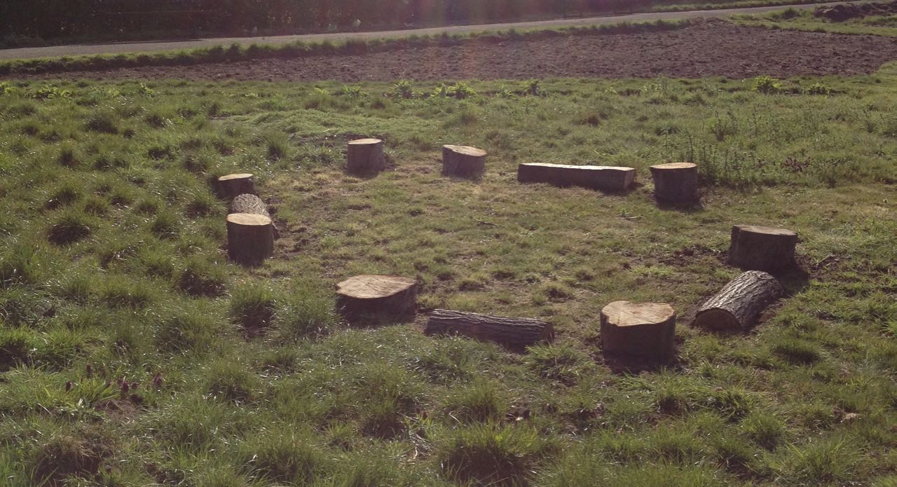 Log circle with spaces for intrepid wheelchairs to enter.