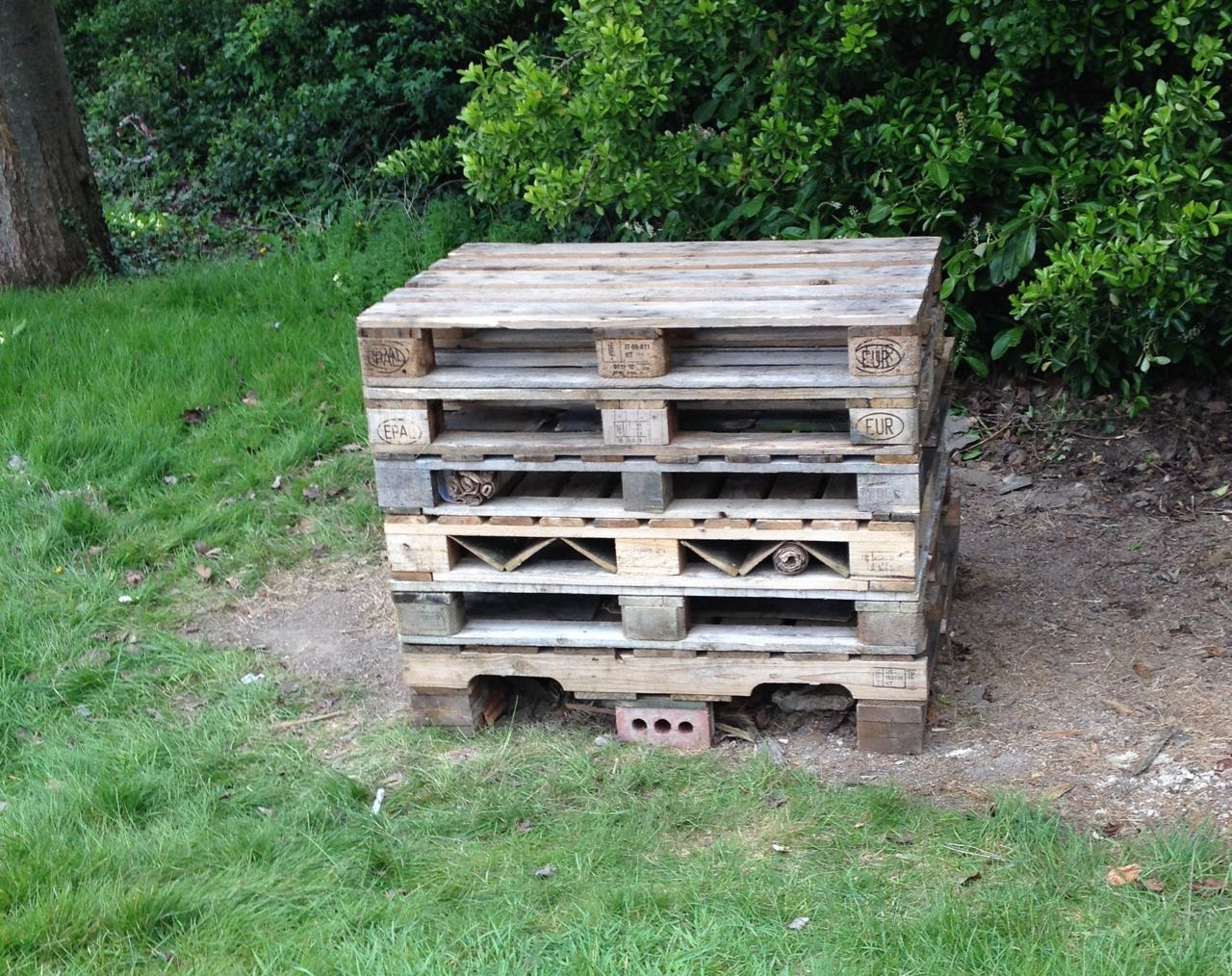 The start of a new bug hotel