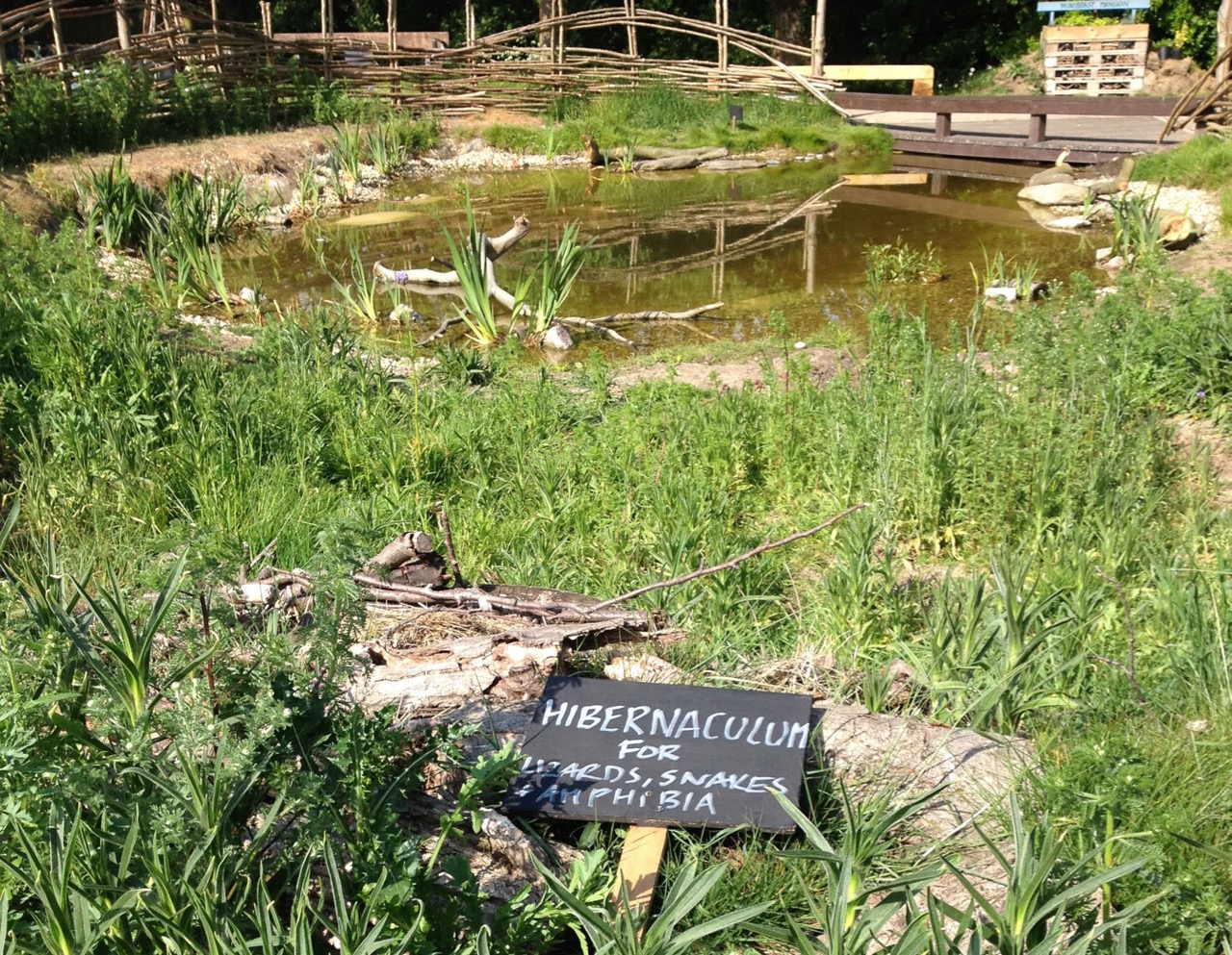 Sign for the hibernaculum at the 'back' of the pond.