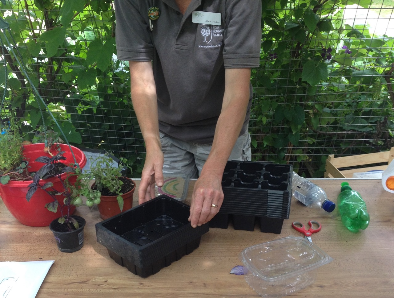Re-usable seeds trays for making rainbow salad gardens to take home. Also small, water-saving, bottle top, 'watering cans'.