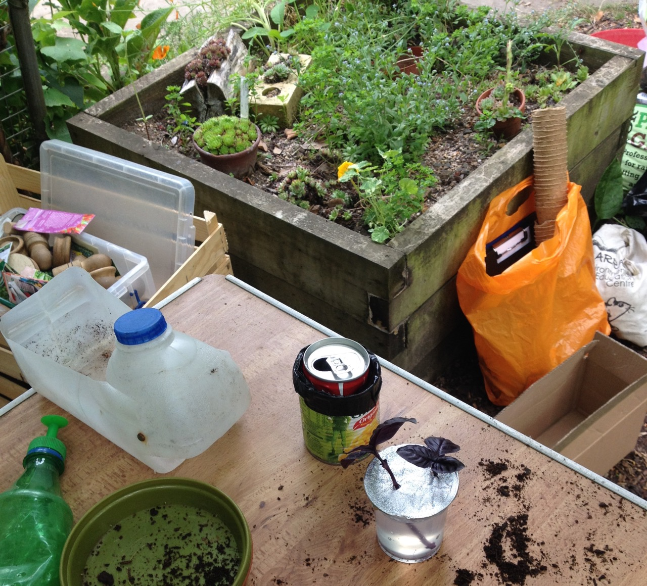 Taking cuttings into gel medium. Can see the roots growing - but they would be expensive for a whole class. Plastic milk bottles can be made into lots of things - I think this is a scoop but we also saw a carrying basket.