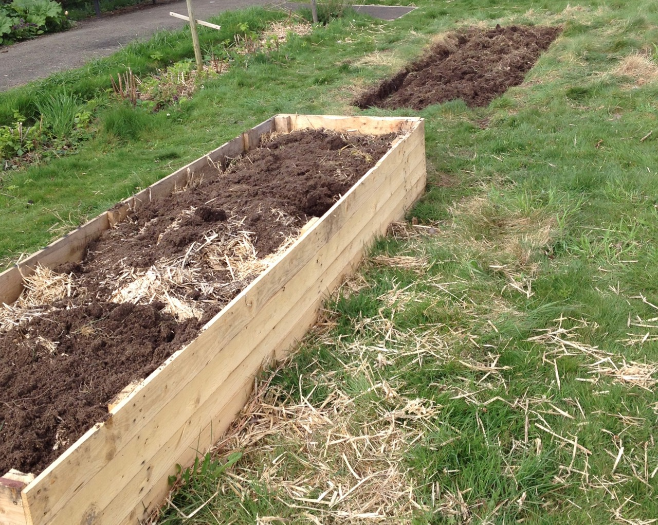 We have started a second raised bed for squash and courgettes - our aim is to make an arch between the two to grow some of them up. All recycled wood from air conditioning deliveries. And a lot of digging from our dream digging team.