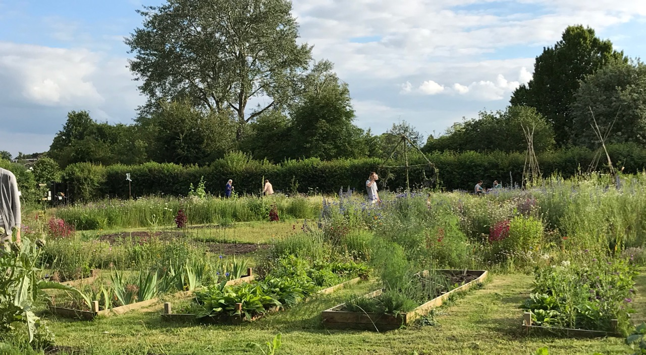 And it was good to see people just explore the garden, look at the plants, look for frogs, throw hoops around… Hope to see you all next year?