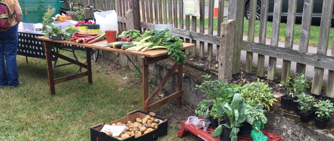 July 2019: Rock Open Morning - with (pre-glut) Abundance stall and information about community gardening in Queen Edith's and beyond. Part of Veg Fest.